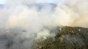 MUĞLA Alevlere 24 saattir müdahale ediliyor